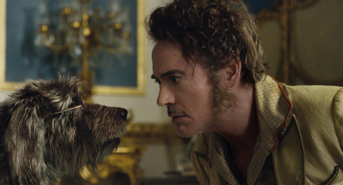 Robert Downey jr. spricht mit seinem Hund.  Filmkritik Dr. Dolittle